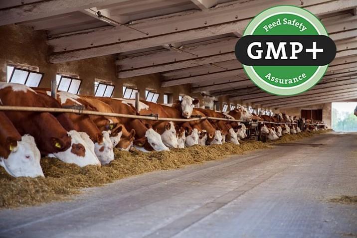 Валидация стандартов GMP и GMP+